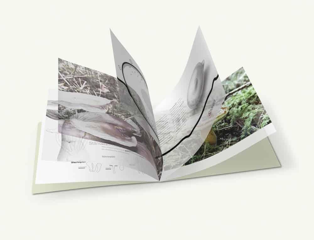 Designstudie Storytelling